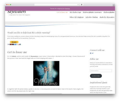Longevity best free WordPress theme - skyewaters.com