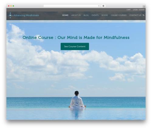 WordPress vibe-course-module plugin - advancingmindfulness.com