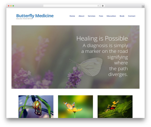 Ascension WordPress theme - butterfly-medicine.com