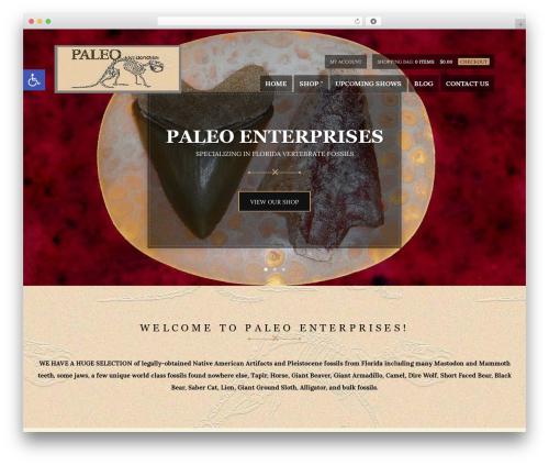 Hugo top WordPress theme - paleoenterprises.com