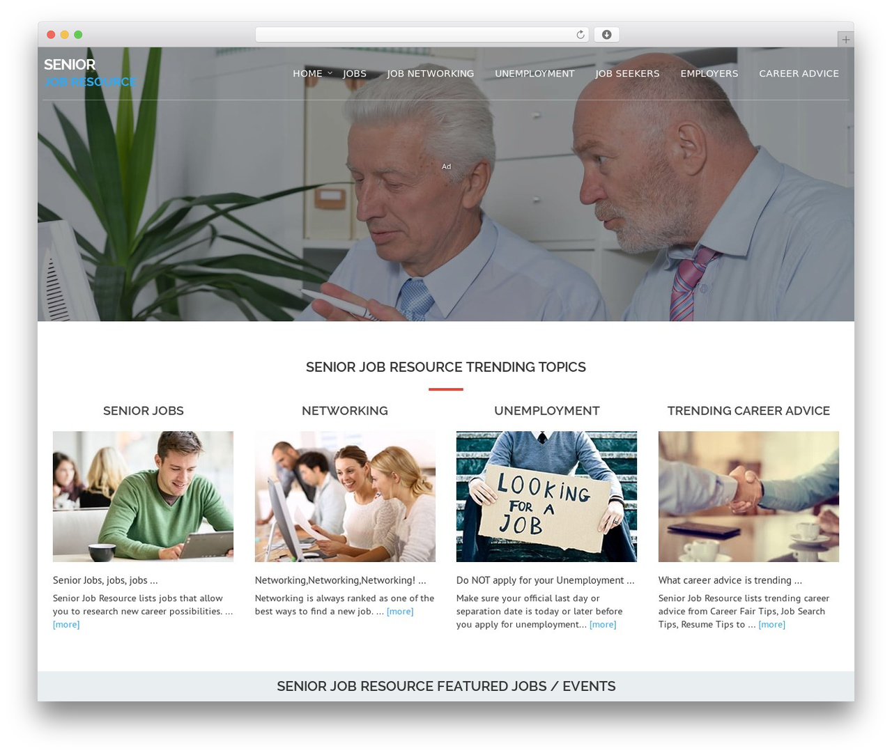 WordPress theme Avion - seniorjobresource.com