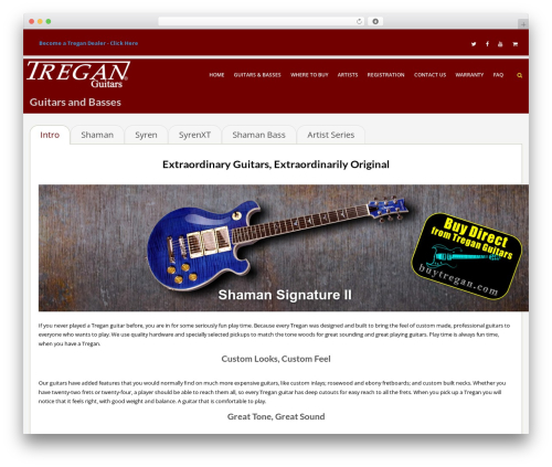 WordPress website template Lavish Pro - treganguitars.com
