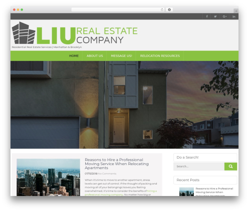 WordPress website template Milestone lite - liunewyork.com