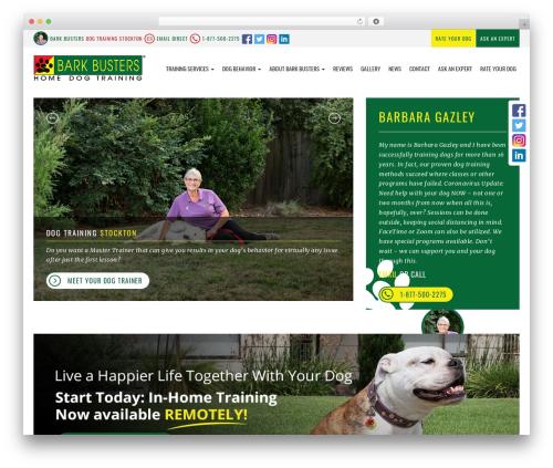 bigdogbroadcast2 WordPress theme design - dogtrainingstockton.com