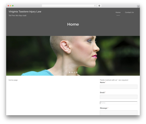 Bizlight best WordPress theme - virginiataxotereinjurylawyers.com