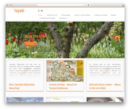 Customizr best WordPress template - tayabi.com