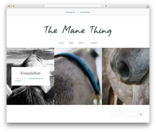 Carbis WordPress theme - themanethingblog.com