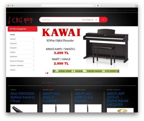 Electro WordPress theme design - cagmuzik.com