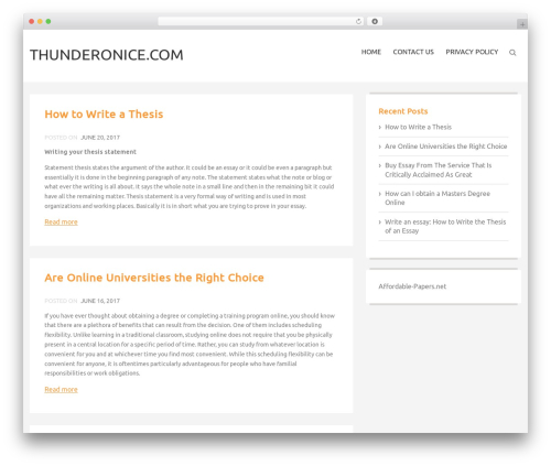 The Best Blog theme free download - thunderonice.com