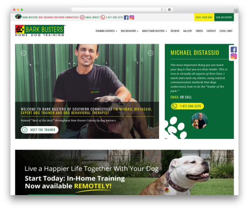 bigdogbroadcast2 WordPress theme - dog-training-new-haven-ct.com