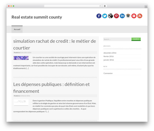 Coller WordPress template free - real-estate-summit-county.com