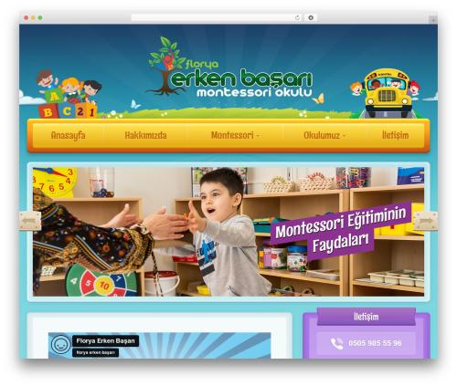 WordPress theme Toddlers - floryaerkenbasari.com