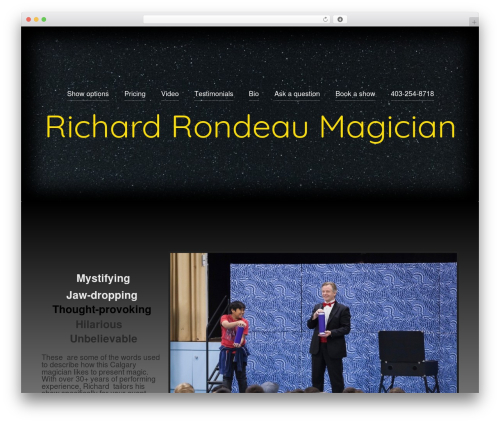 BadJohnny WordPress theme free download - rrmagician.com