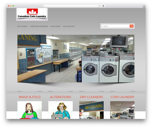 LizardBusiness WordPress template for business - canadiancoinlaundry.com