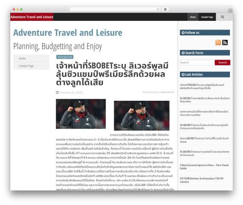 SmartAdapt free WordPress theme - lygtengli.com