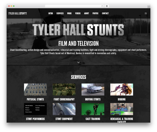 Theme WordPress Blade - tylerhallstunts.com