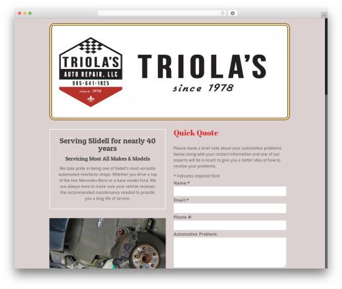 Betheme best WordPress template - triolasauto.com