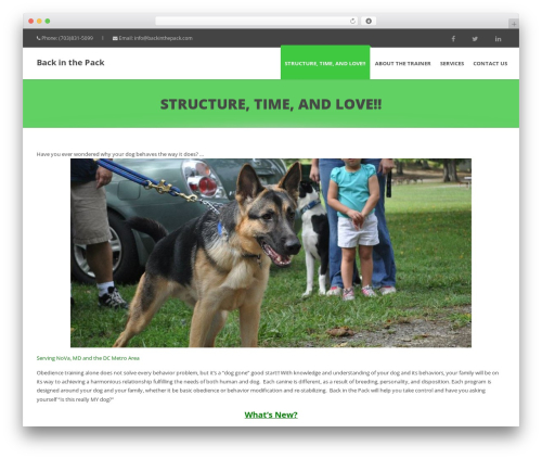 Calypso WordPress theme - backinthepack.com