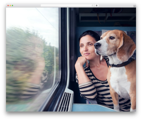 Profiles WordPress travel theme - pettravelquestions.com