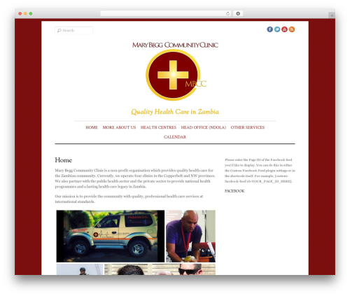 Elemin best WordPress theme - marybeggclinic.com