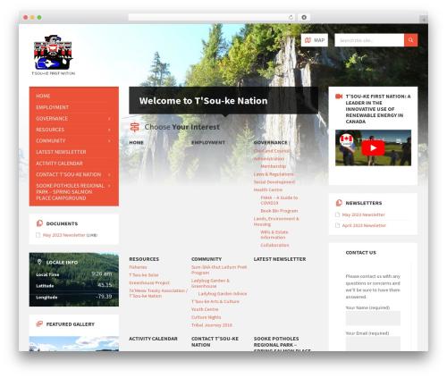 WordPress theme TownPress - tsoukenation.com