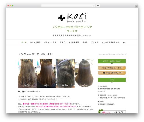 Edge WordPress theme - kotihairworks.com
