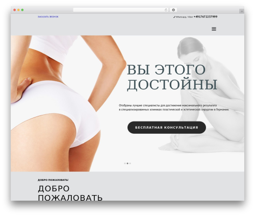 Isida WordPress theme design - plasticgermany.com