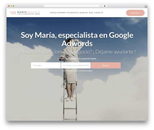 WordPress theme LaunchKit - especialistaengoogleadwords.com