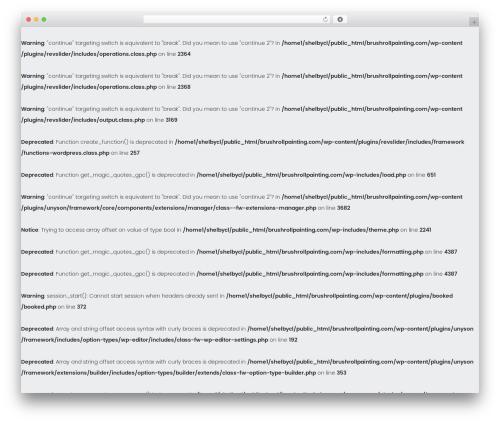 handyman premium WordPress theme - brushrollpainting.com