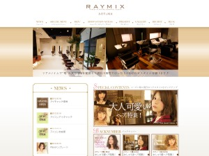 RAYMIX-Plain WordPress blog template