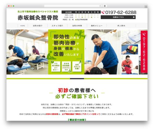 Template WordPress Original Style - 1column - akasaka-seikotsu.com