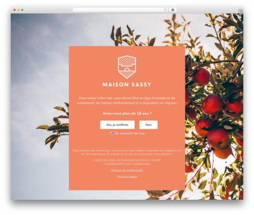 Theme WordPress Avada - maison-sassy.com