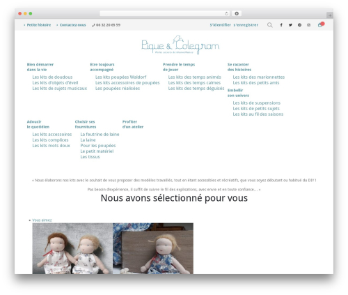 WordPress website template Porto - pique-et-colegram.com