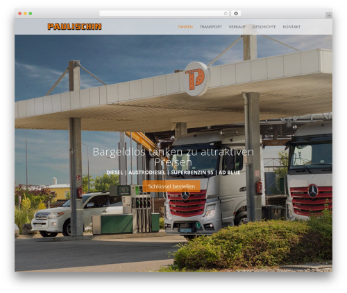 Divi template WordPress - paulischin.com