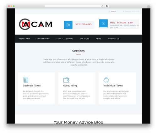 WP theme Adviser - cam-accounting.com