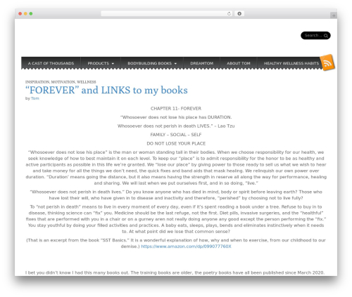 Snowblind free WP theme - tomtypinski.com