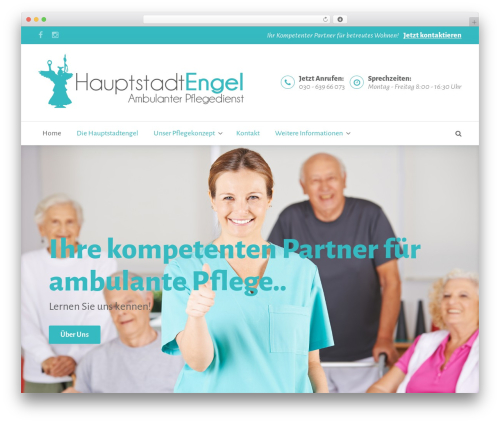 BeDENTIST WordPress theme design - hauptstadt-engel.com
