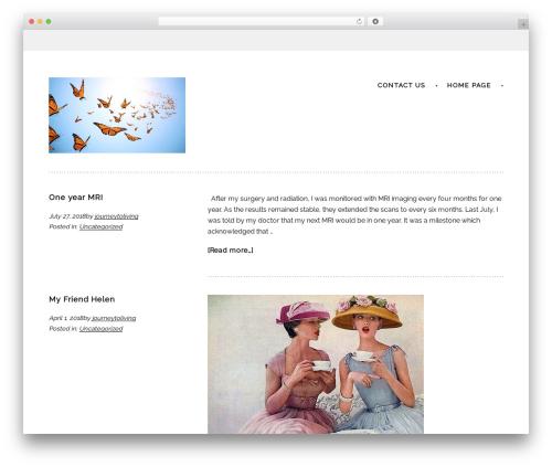 Sans-serif top WordPress theme - journeytoliving.com