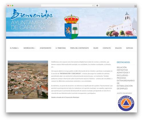 Best WordPress theme ARW Leka - ayuntamientocarmena.com