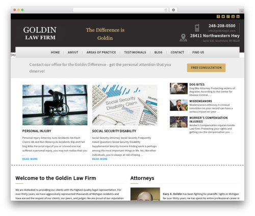 Dynamik-Gen business WordPress theme - goldinlegal.com