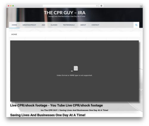 Eezy Store WordPress template for business - irathecprguy.com