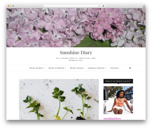 Theme WordPress Edge - sunshinediary.com