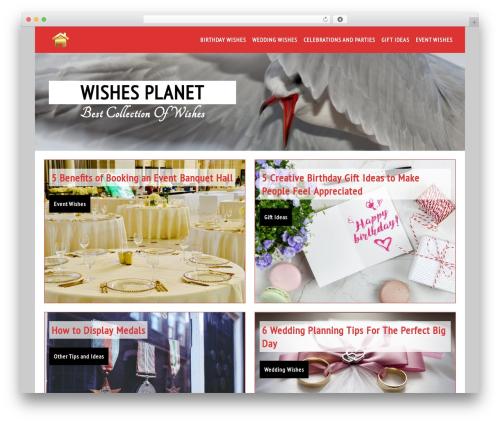 WordPress website template Live Portfolio - wishesplanet.com
