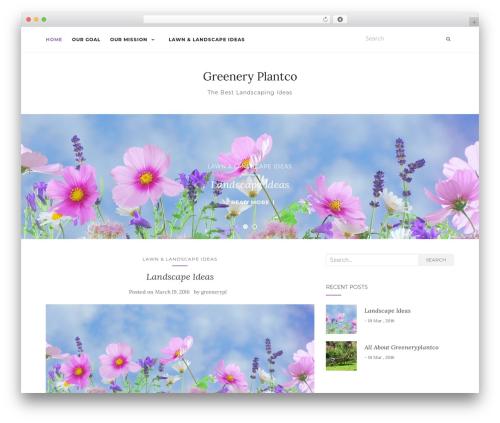 Activello WordPress free download - greeneryplantco.com