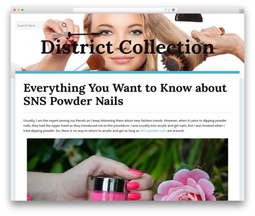 Adelin WordPress website template - districtcollection.com