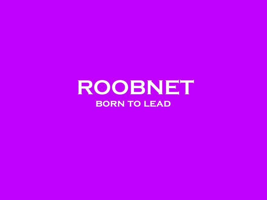 ROOBERPP premium WordPress theme