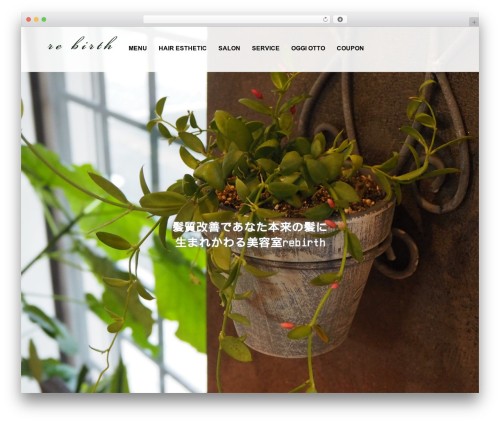 AGENT WP theme - rebirth-hairworks.com