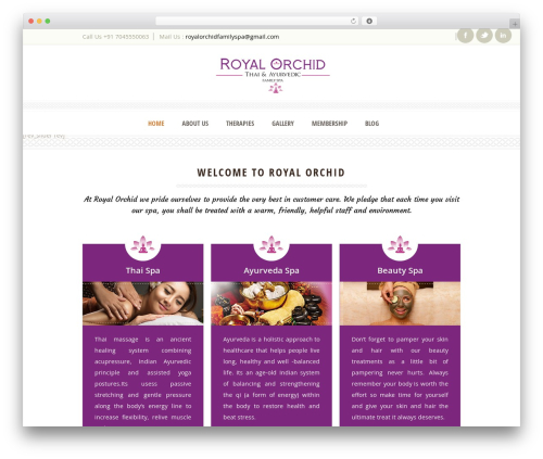 Dream Spa top WordPress theme - royalorchidfamilyspa.com