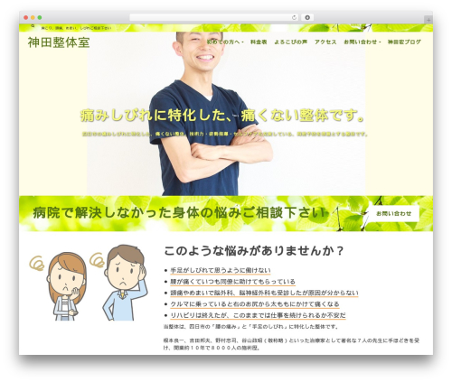 Pinnacle best free WordPress theme - kanda-seitai.com