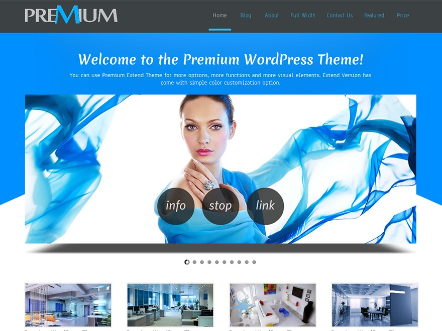 Premium  Extend company WordPress theme
